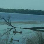 This photograph was take near Lake Traverse and Bigstone Lake in Northeastern South Datkoa #bigstone #traverse